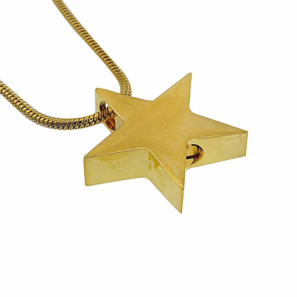 Ashanger ster goud zij